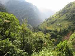 Nepal 201642