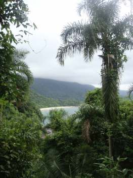 Brazil South America 2009 b1419