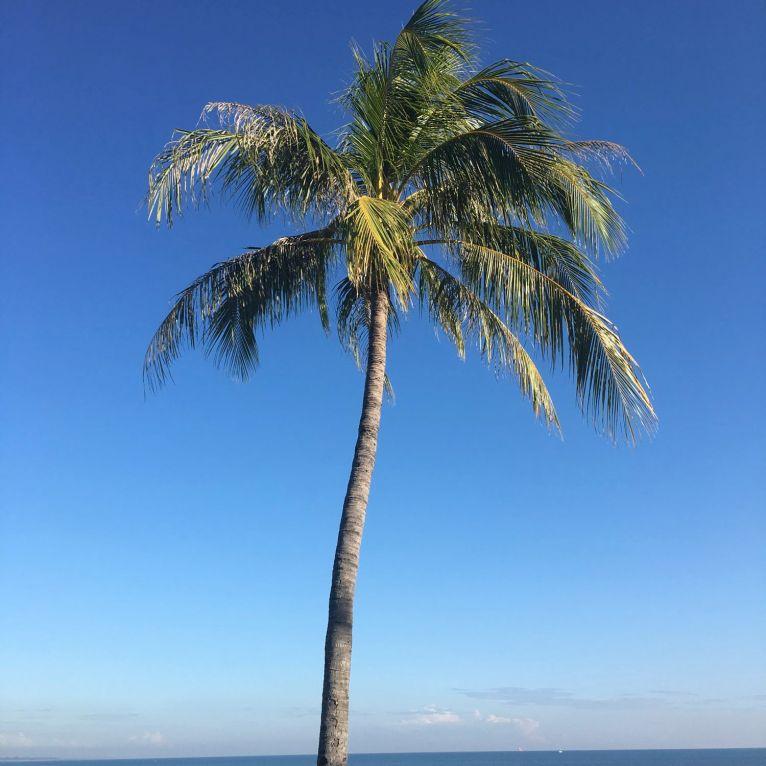 Northern Territory 2017 IMG_7918 1
