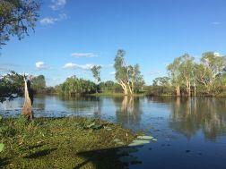 Northern Territory 2017 IMG_8011 1