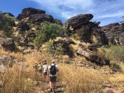 Northern Territory 2017 IMG_8199 1
